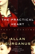 Chip Kidd Book Cover - Allan Gurganus The Practical Heart Four Novellas Book